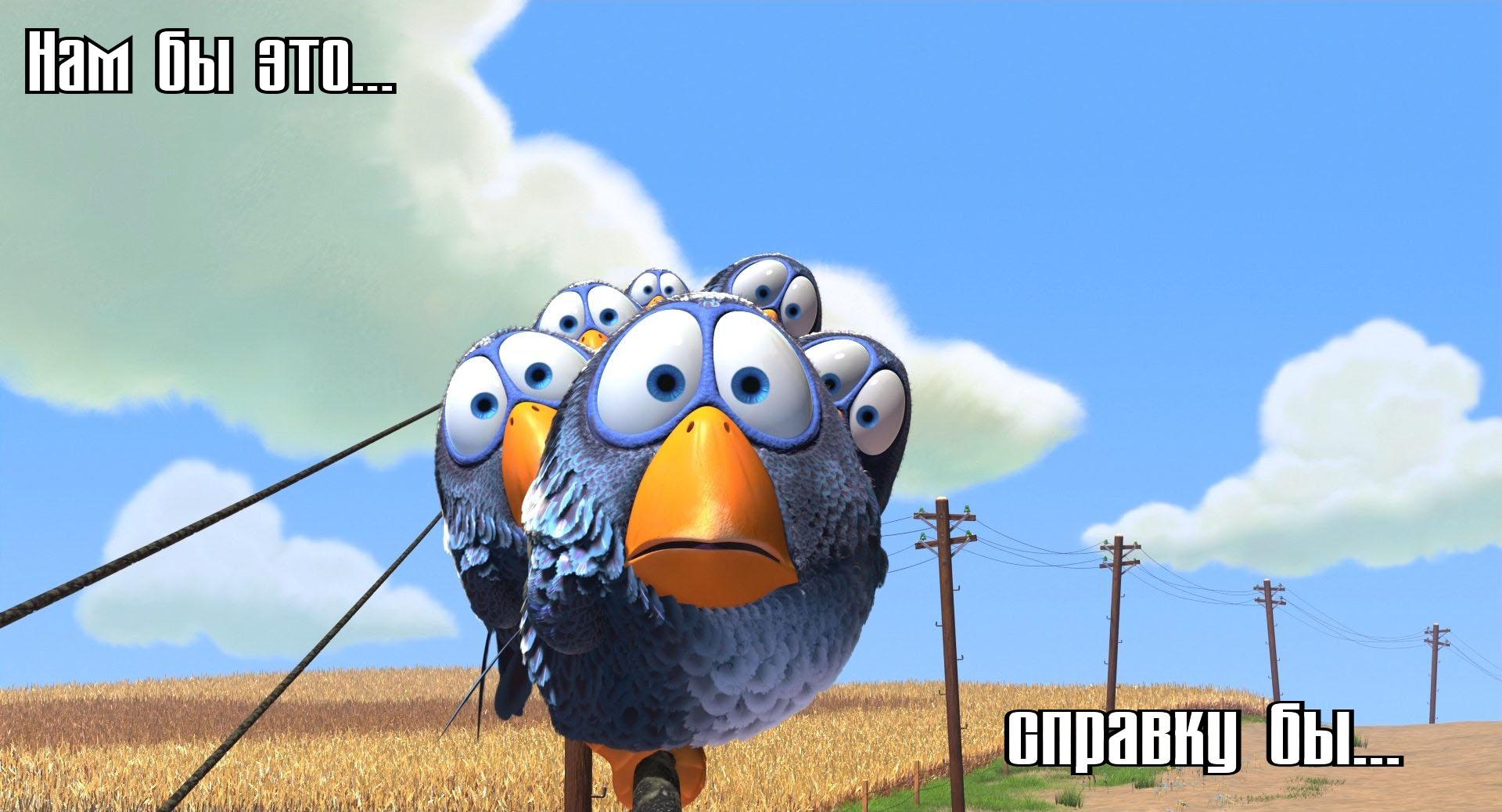 o-ptichkah